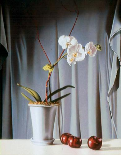 Plums and Orchid